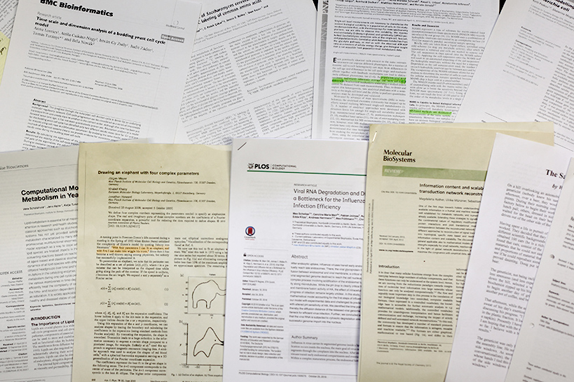 Peer-reviewed publications